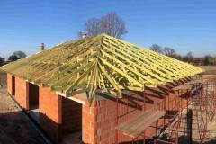 dach domu topola katowa (8)