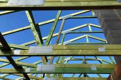 dach domu topola katowa (2)