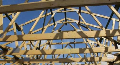Belki stropowe i płytki kolczaste